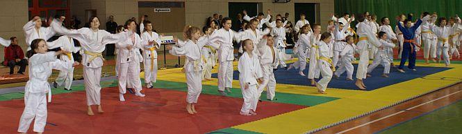Dobry występ judoków ze Strzegomia