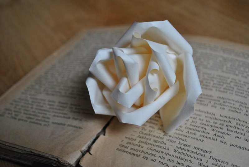 Piękniejszy świat Beaty: Papierowe róże