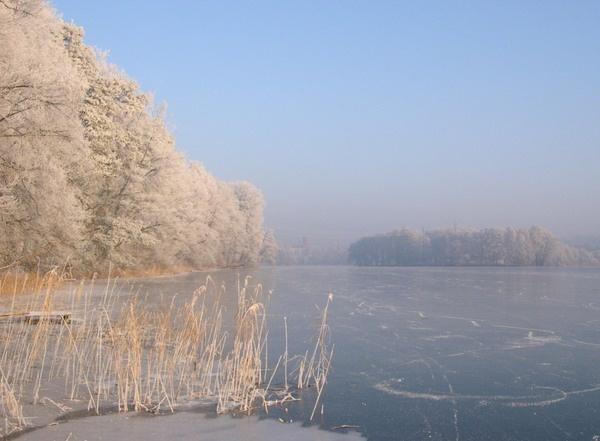 jez_lagowskie-zima_Details-0