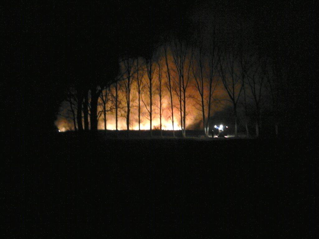 Płonęły trawy na Osiedlu Młodych