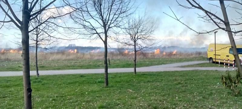 pożar traw (3)