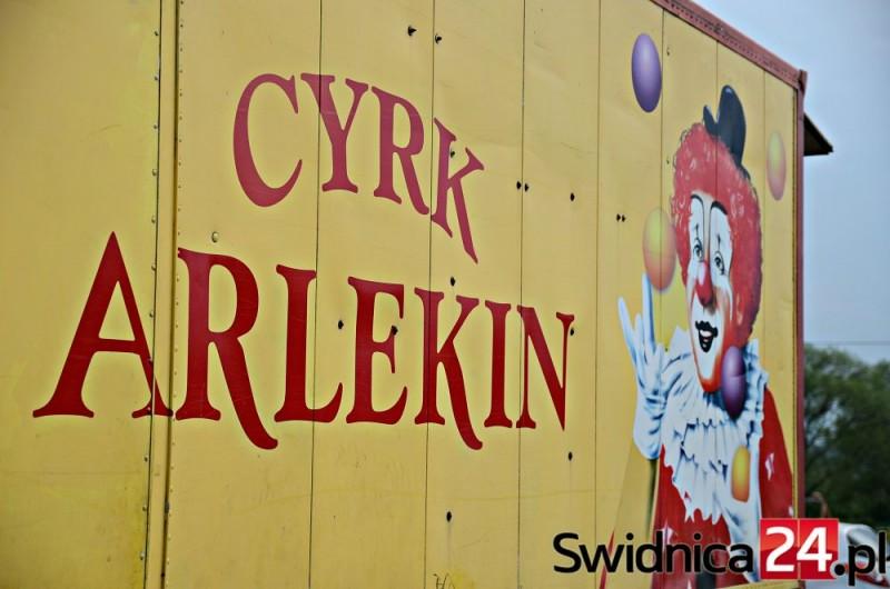 cyrk_arlekin (77) — kopia