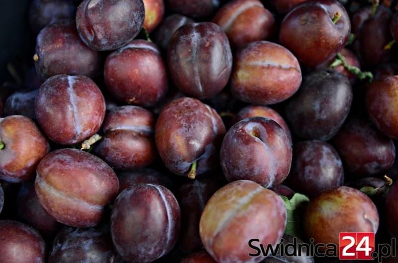 Owoce (6)