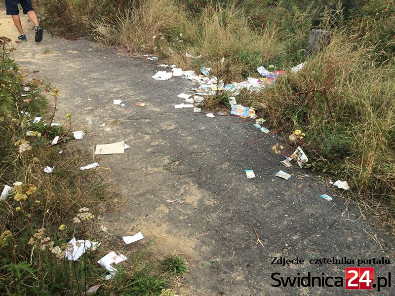 śmieci Zawiszów
