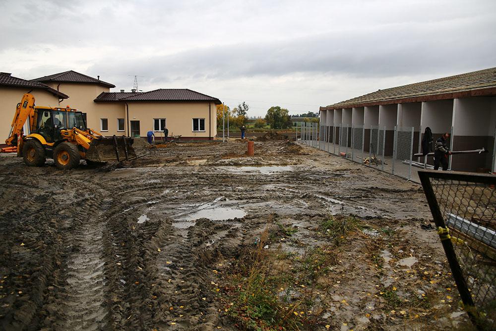 schronisko-2016-10-25-5