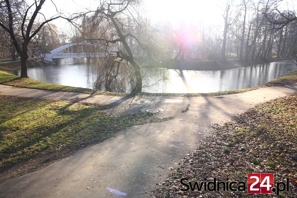 park-centralny-2016-12-23-2