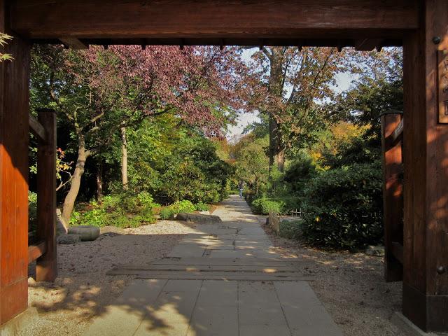 Małki w podróży: Wrocław, ogród japoński
