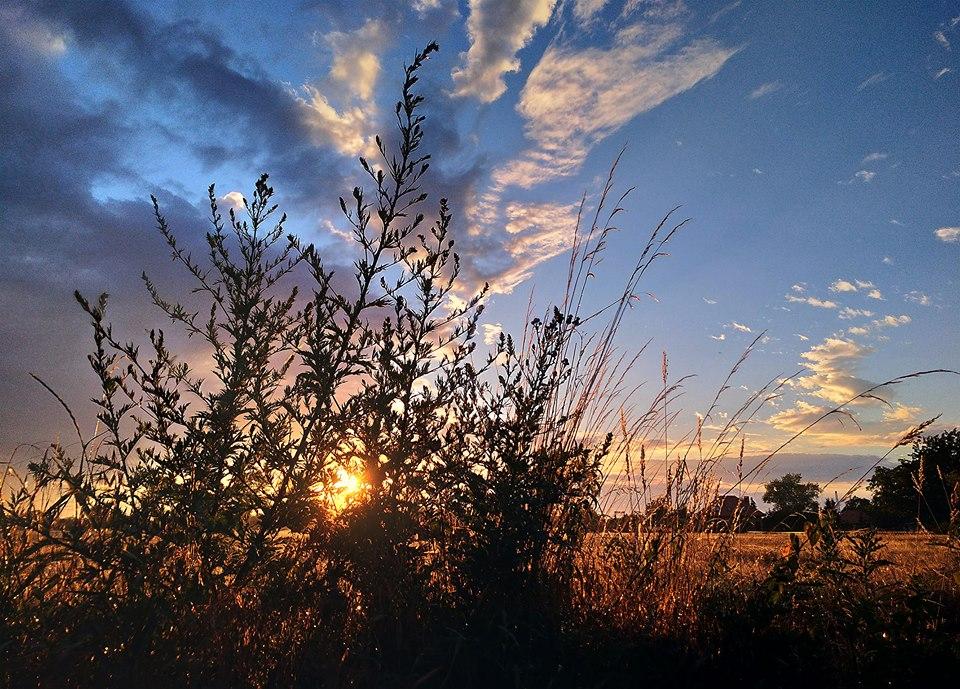 Zdjęcie krajobrazowe. Autor: Marek Wilk