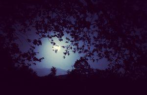 Księżyc nad stawem w Gogołowie, fot. Łukasz Balant