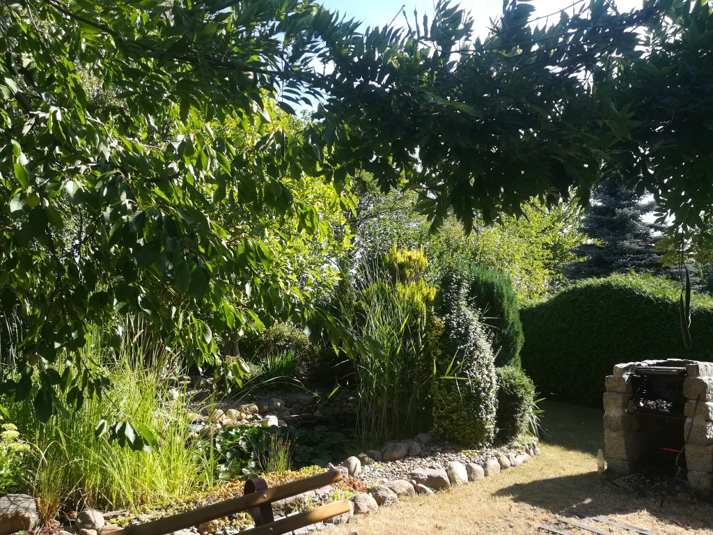 Ogród ROD Relax w Świdnicy, fot. Violetta Ostrowska