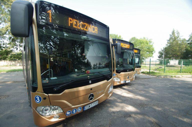Wszystkich Świętych w Świebodzicach. Specjalny rozkład autobusów na 1 listopada