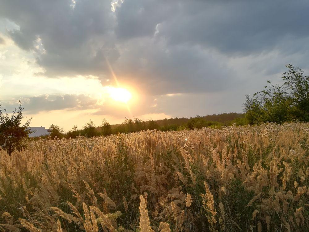 Kostrzyn nad Odrą, niedaleko pola woodstockowego, fot. Katarzyna Hruszowiec