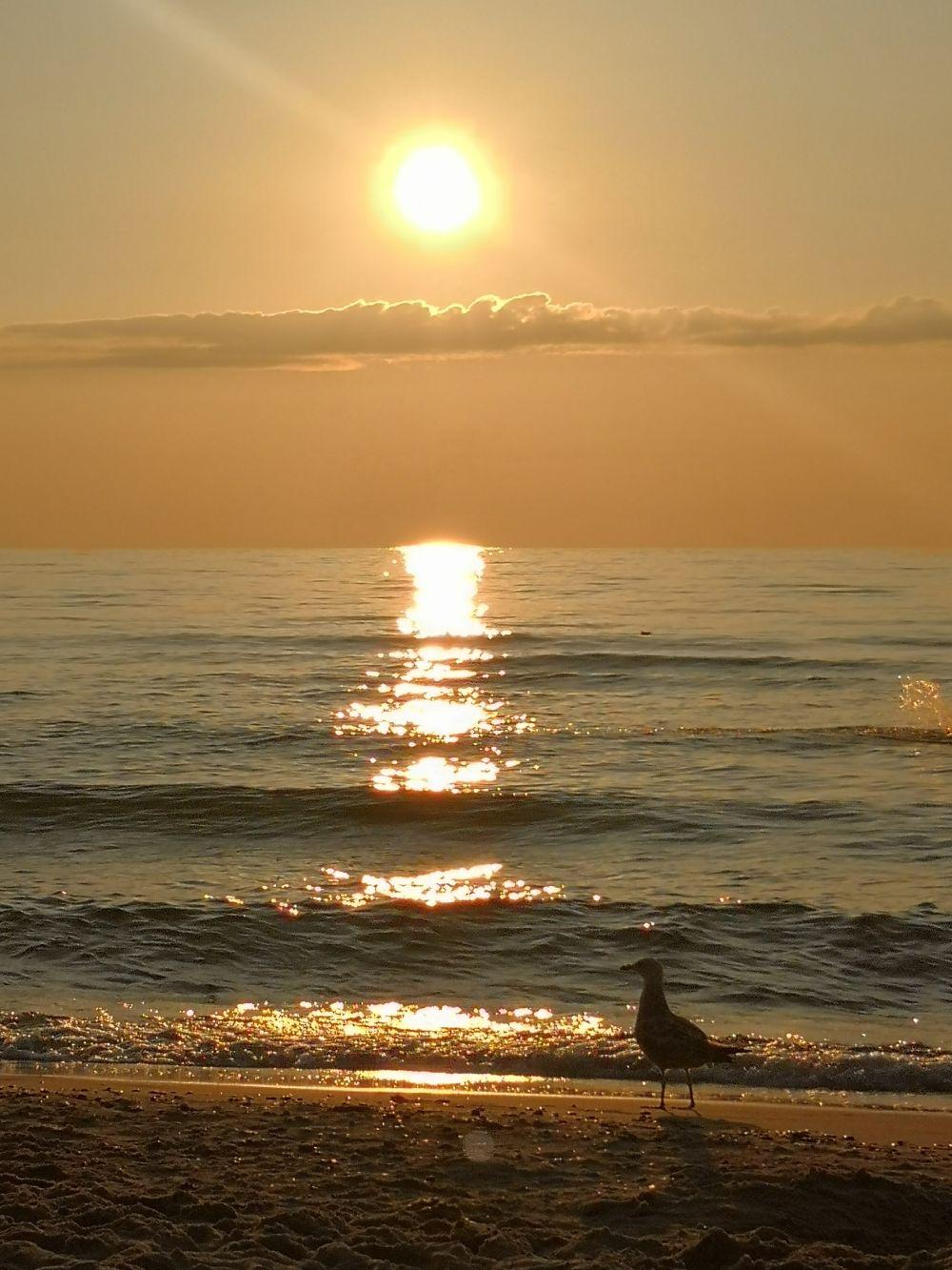 Plaża w Pobierowie, fot. Wioleta Bosakiewicz