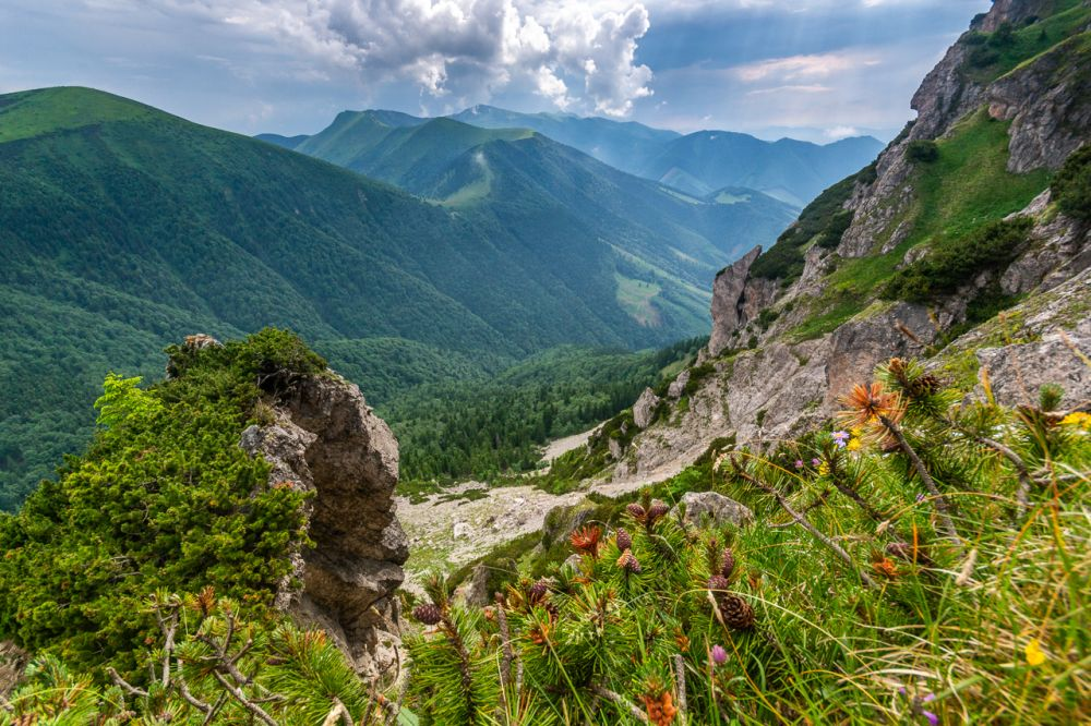 Słowacja, Mała Fatra, zejście z Wielkiego Rozsutca, fot. Mateusz Matwiejczuk