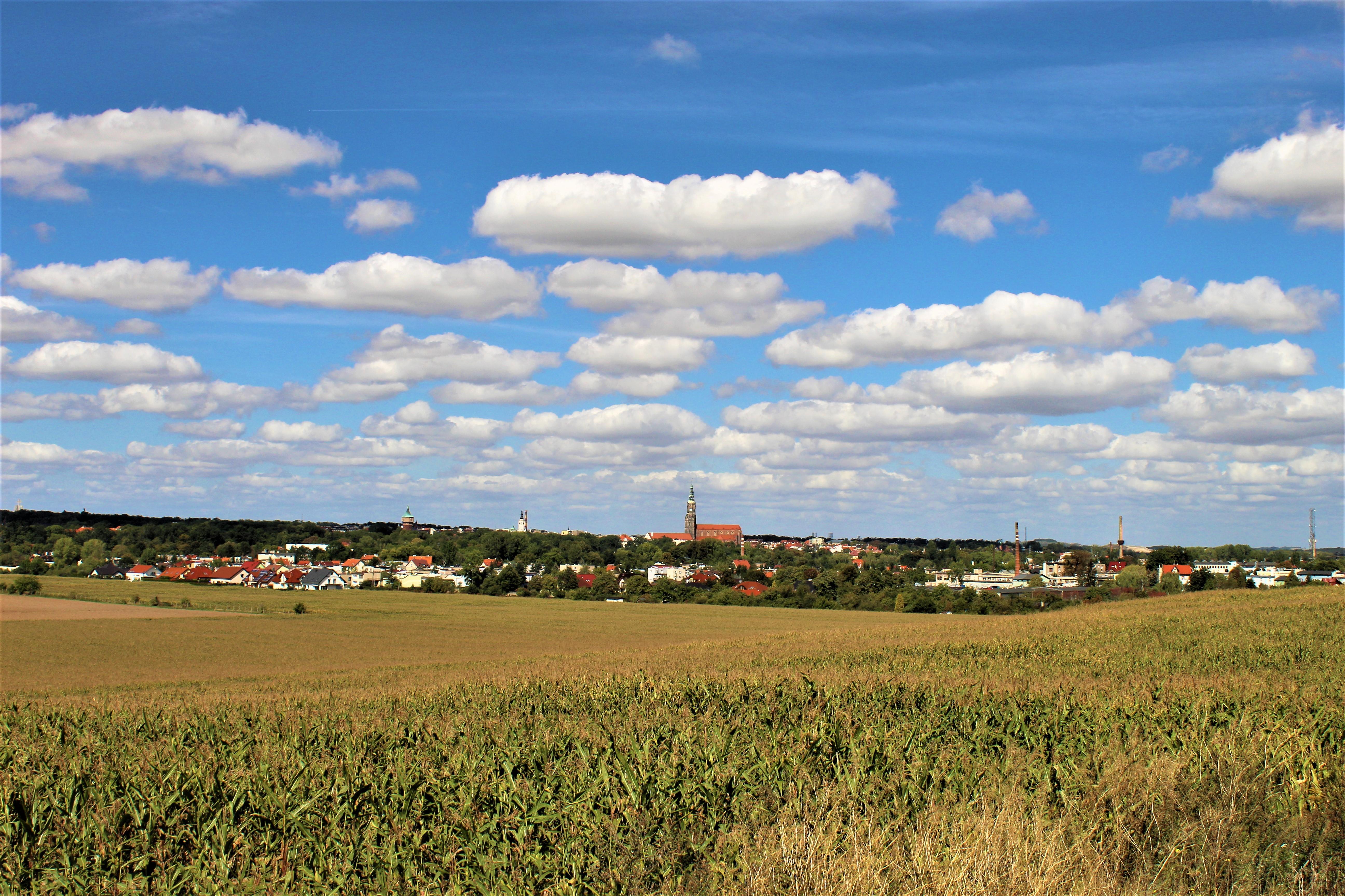 Panorama Świdnicy, fot. Leszek Krawiec