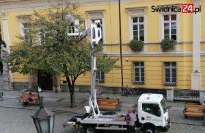 Coraz bliżej święta! Wymiana lampek na drzewach w Rynku