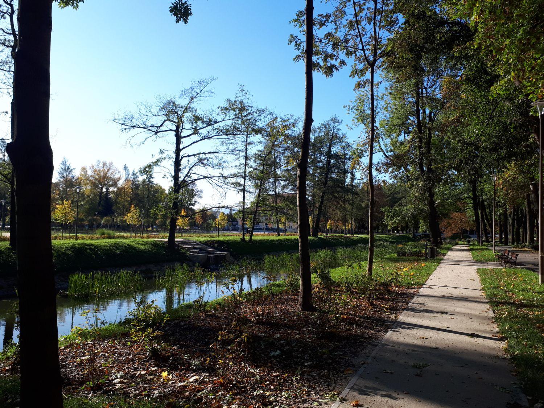 Park Centralny, 12 października 2019, fot. Weronika Rękawiecka