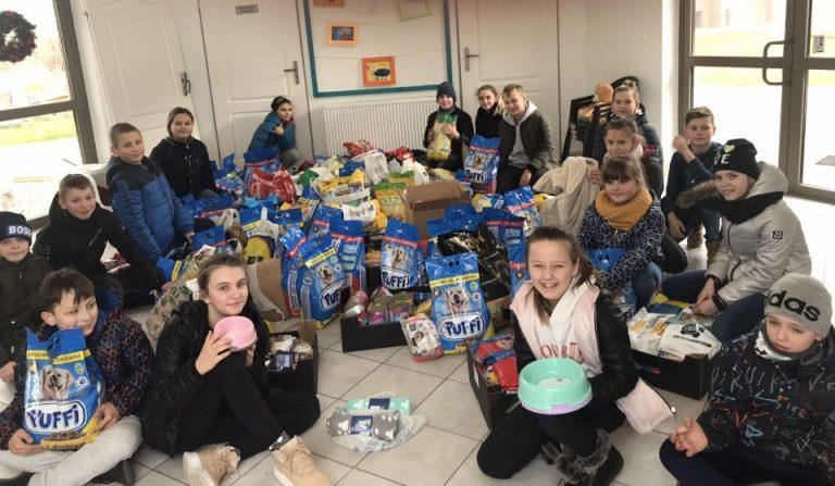 Uczniowie zebrali 650 kg karmy dla podopiecznych świdnickiego schroniska dla zwierząt