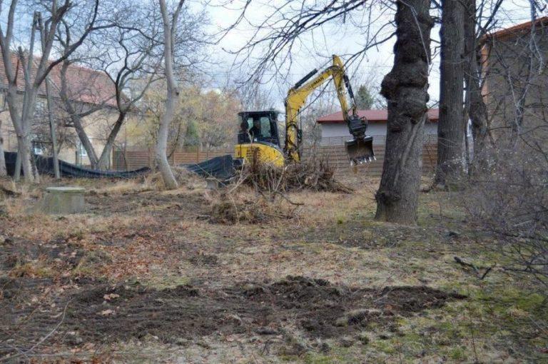 Rewitalizują park w Świebodzicach [FOTO]
