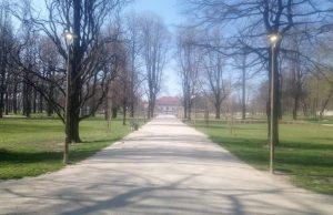 Oświetlenie w Parku Centralnym także za dnia
