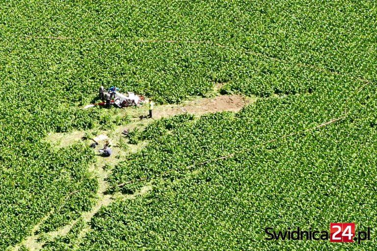 Katastrofa śmigłowca w Strzegomiu. Komisja badania wypadków lotniczych wyjaśnia przyczyny, prokuratura wszczyna śledztwo