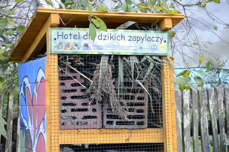 Jak przygotować eko-hotel dla owadów? Warsztaty w Wierzbnej