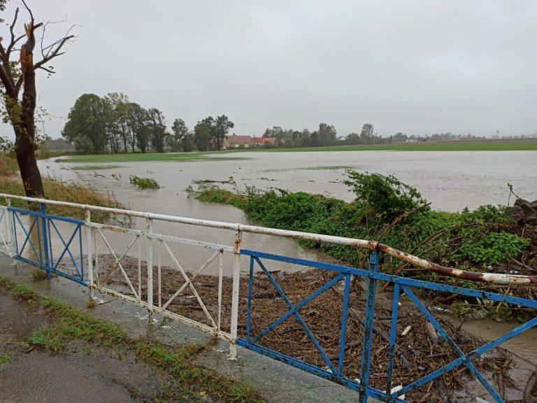 Gmina Strzegom monitoruje sytuację na rzekach. Mieszkańcy Modlęcina obawiają się zalania