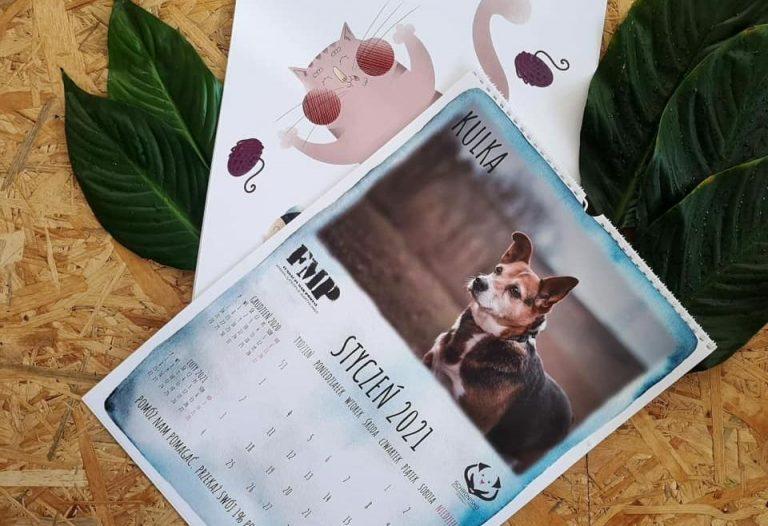 Bazarek zakończony, czas na kalendarze ze zwierzakami