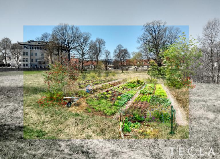 Ekologiczny ogród powstanie w Krzyżowej