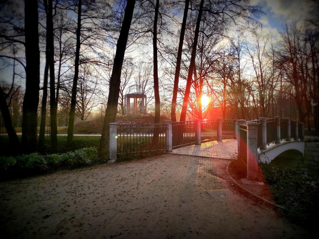Park Centralny, Świdnica, 17.03.2021, fot. Jarosław Zembek (3)