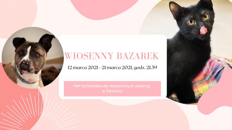 Wiosenny bazarek dla psiaków i kociaków ze schroniska