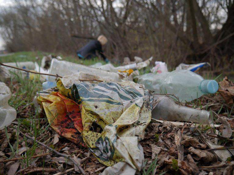 Mieszkańcy wysprzątali Wierzbną [FOTO]