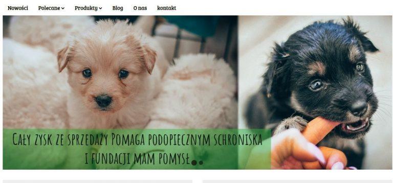 Charity Shop także on-line. Pomagaj zwierzakom bez wychodzenia z domu