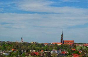 Panorama Świdnicy z kwitnącym rzepakiem. Fot. Leszek Krawiec